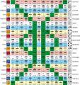 Цолькин - Священный Счёт Кинов. Матрица 13:20 четырёхмерности. Гармонический Модуль. Основа всех 17 календарей майя. Ткацкий Станок Майя - 20 цветных нитей с 52-элементным узором Порталов Галактической Активации. Включение двойной спирали ДНК.